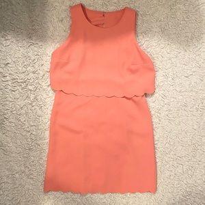 Ann Taylor Loft Peach Scallop Dress Size 10 Petite